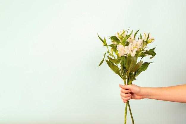Mooi zacht boeket van bloemen in vrouwelijke hand op witte achtergrond.