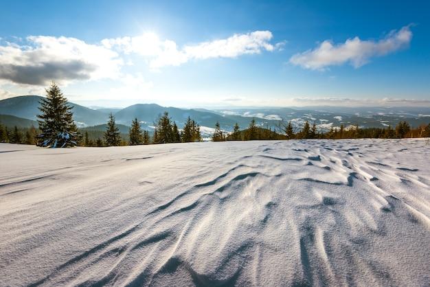 Mooi zonnig landschap van pluizige dennenbomen die groeien tussen witte sneeuwlaag tegen een oppervlak van heuvels en een bos met witte wolken en een blauwe lucht op een ijzige dag