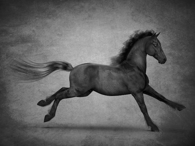 Mooi zwart paard 3d-rendering