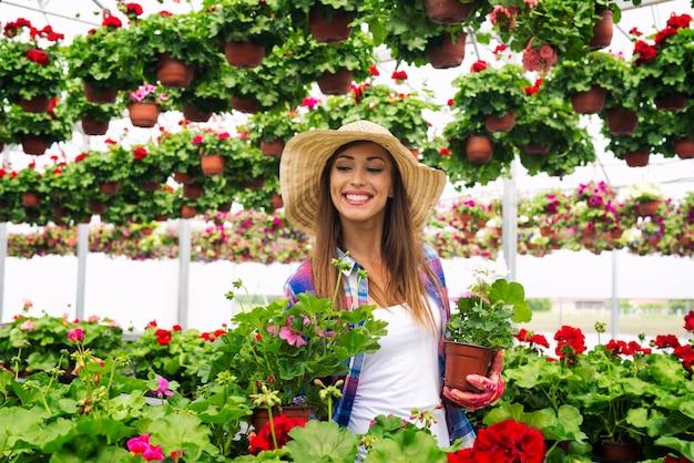 Mooie aantrekkelijke vrouwenbloemist die met hoed door serre loopt die ingemaakte bloemen houdt en installaties controleert