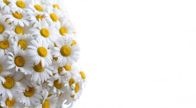 Mooie achtergrond met bloemen, copyspace