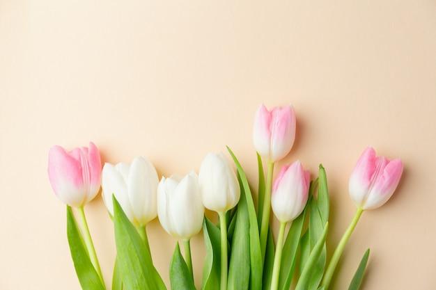 Mooie achtergrond met lentebloemen op pastel. lente concept
