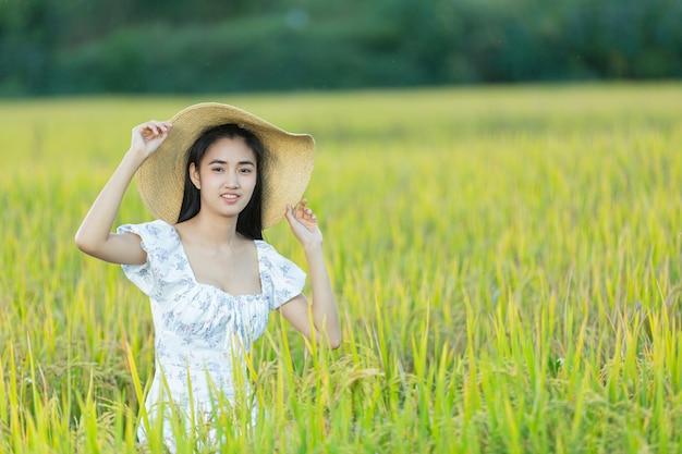 Mooie aziatische vrouw die in het padieveld geniet van