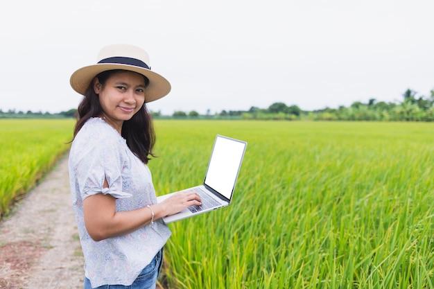 Mooie aziatische vrouwen die zich in het padieveld bevinden en werken gebruikend laptop vrijetijdskleding dragen.