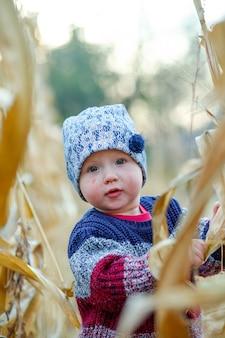 Mooie baby in warme stijlvolle trui staande in het midden van maïsveld. oogst tijd. biologische landbouw voor kinderen.