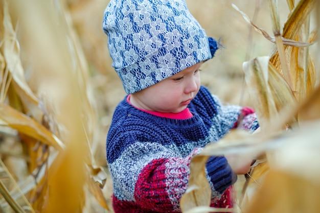 Mooie baby in warme stijlvolle trui staande in het midden van maïsveld