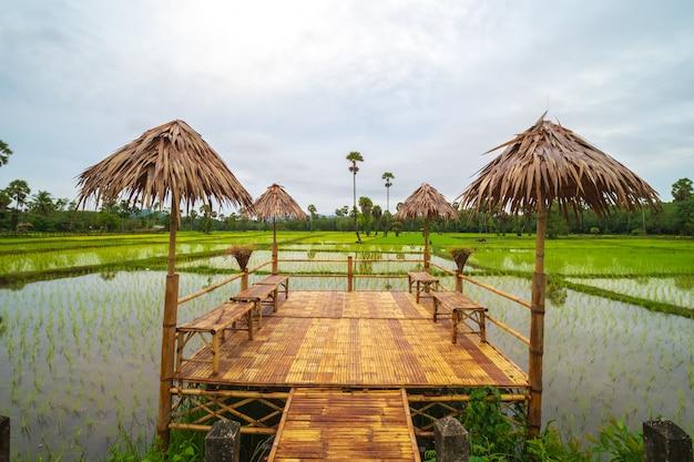 Mooie bamboestructuur