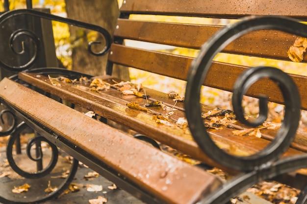 Mooie bank in het herfstpark, gele bladeren