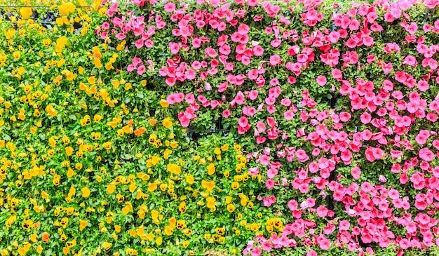 Mooie blad schoonheid floral hedge rood