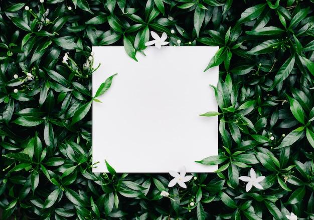 Mooie bladeren met stront papier
