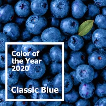 Mooie blauwe bessen in kleur van het jaar 2020 classic blue.
