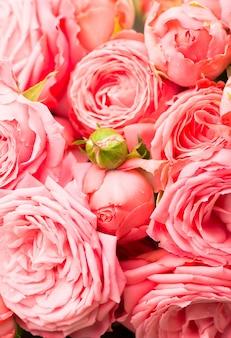 Mooie bloemen bloemachtergrond - roze nam de achtergrond van het bloemboeket toe