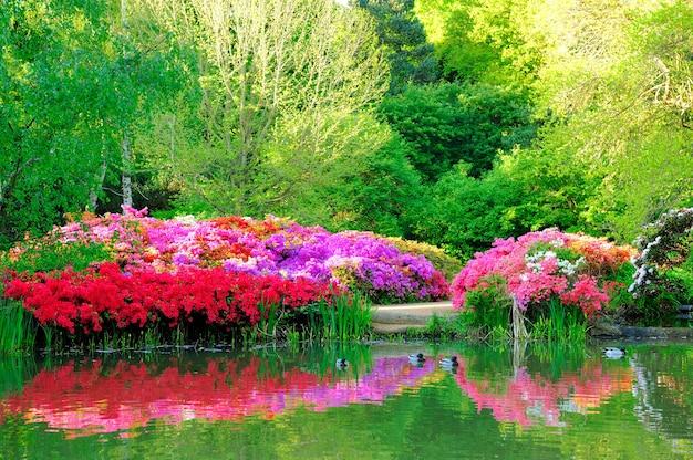 Mooie bloemen en hun bezinning bij isabella-tuin in het park van richmond, londen