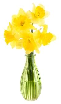 Mooie bloemen in vaas geïsoleerd op wit