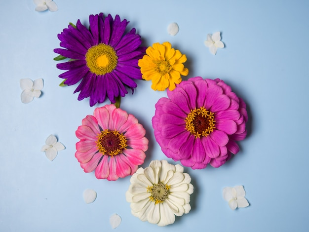 Mooie bloemen op een blauwe achtergrond. vakantie ansichtkaart