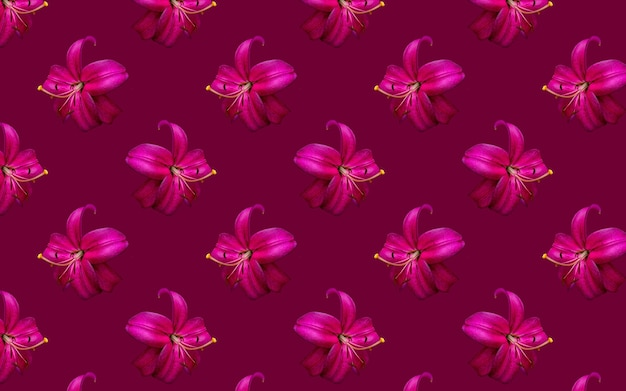 Mooie bloemen roze lelies. naadloze patroon van lily bloem bloei. bloemen natuurlijke achtergrond.
