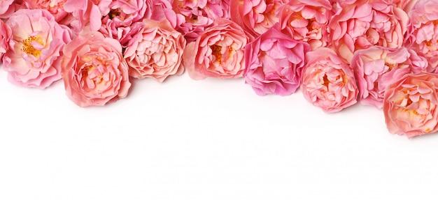 Mooie bloemenrand op witte achtergrond