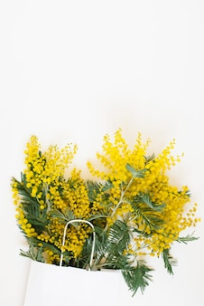 Mooie bloemensamenstelling. takken bloemen mimosa op witte achtergrond. valentijnsdag, pasen, verjaardag, moederdag. platliggend, bovenaanzicht, kopieerruimte