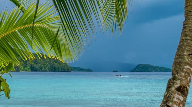 Mooie blue lagoone met een palmboom vooraan, gam island, west-papoea, raja ampat, indonesië.