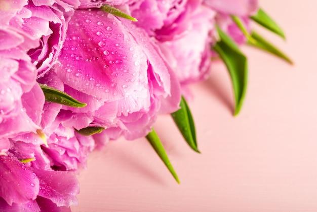 Mooie bos paarse tulpen in pioenstijl