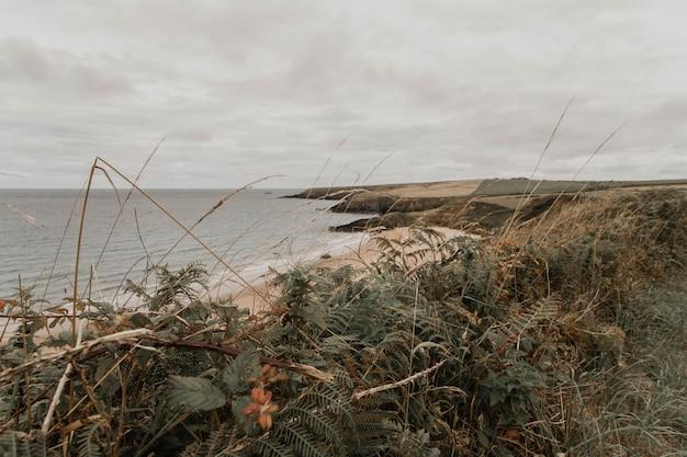 Mooie brede opname van de oceaan en groen aan de kustlijn met een verbazingwekkende bewolkte hemel