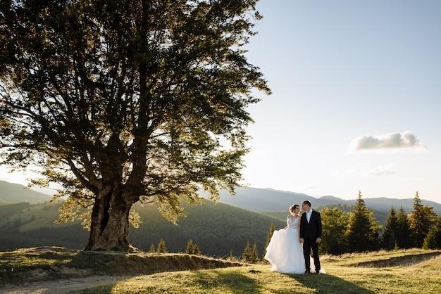 Mooie bruid en bruidegom in de bergen