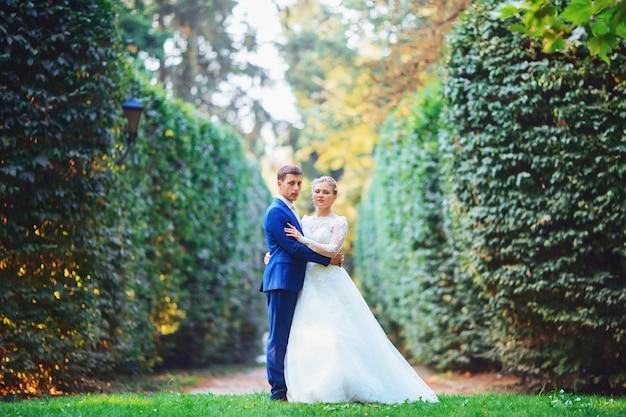 Mooie bruid in een dure jurk wandelen in het bos in de natuur, hand in hand. bruiloft portret. fotografie, concept.