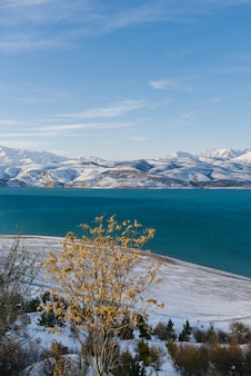 Mooie charvak op een winterse sneeuwdag in oezbekistan