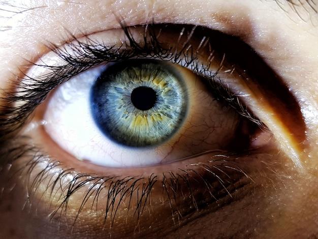Mooie close-up die van de diepe blauwe ogen van een vrouwelijke mens is ontsproten