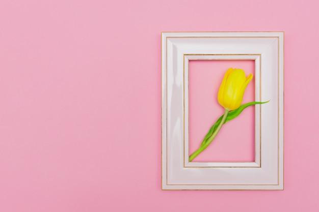 Mooie compositie met lentebloemen. fotoframe, gele tulp op pastel roze achtergrond