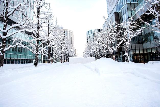Mooie, de wintersneeuw in sapporo, hokkaido, japan