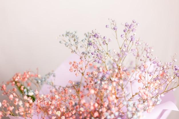 Mooie decoratie schattige kleine gedroogde kleurrijke bloemen, behang.