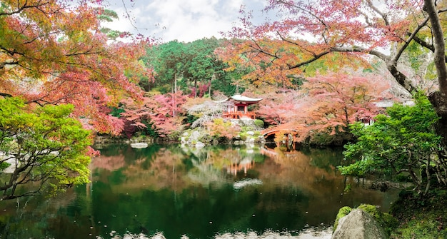 Mooie en multikleuren van esdoornbomen bij daigoji-tempel met vijver op achtergrond van de bochten de blauwe hemel