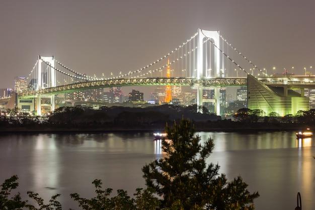 Mooie en nachtmening van de baai van tokyo, de brug van de regenboog en het oriëntatiepunt van de toren van tokyo, odaiba, ja