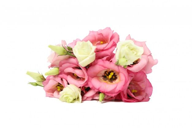 Mooie eustomabloemen die op wit worden geïsoleerd