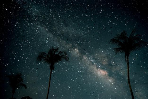 Mooie fantasie van palmboom op tropisch strand met melkachtige maniersterren in nachtelijke hemelachtergrond. retro stijl kunstwerk met vintage kleur toon