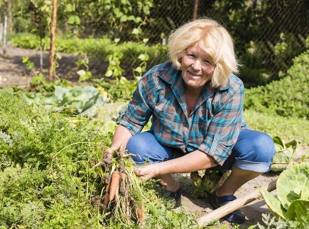 Mooie foto van oude vrouw die de wortelen in de tuin oogst