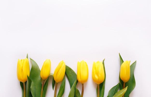 Mooie gele tulpen op een witte achtergrond, plaats voor tekst bovenaanzicht.