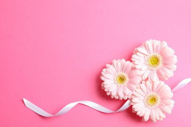 Mooie gerberabloemen op kleurenachtergrond, ruimte voor tekst