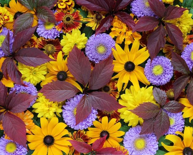 Mooie herfst achtergrond voor felicitaties en ansichtkaarten.