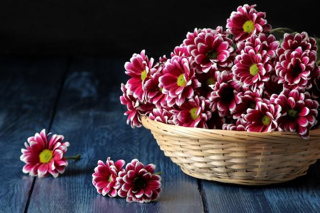 Mooie herfst chrysant bloemen in een mand op een donker blauwe houten tafel
