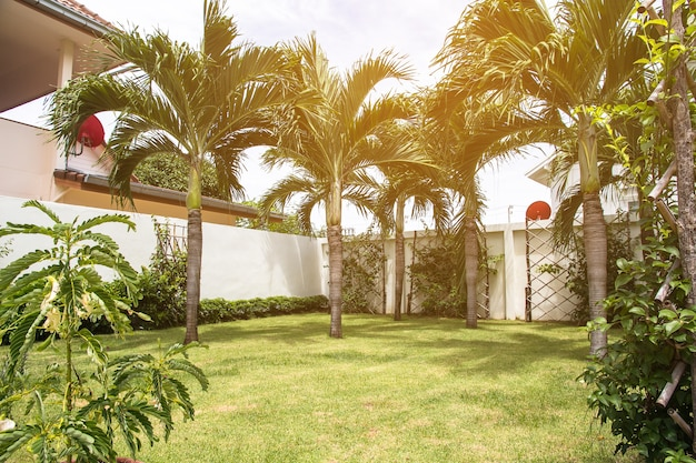 Mooie hoek van de kleine tuin, decoratie tuinieren en landschapsarchitectuur