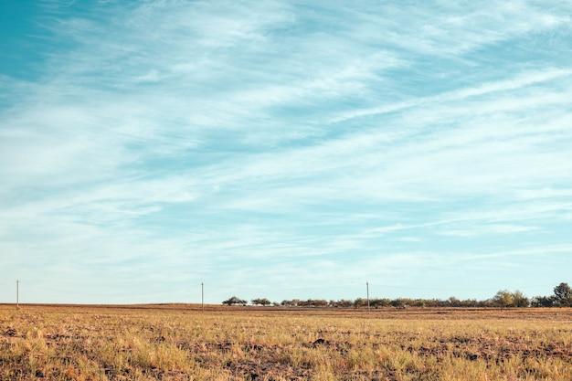 Mooie horizontale landschapsmening met blauwe lucht en gouden grasveld