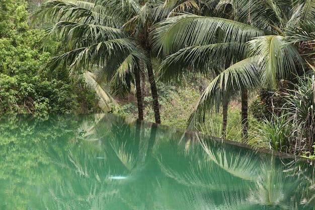 Mooie infinity pool in een tropische tuin, een ontspanningsruimte voor toeristen, weerspiegeling van palmbomen in het water, horizontale oriëntatie, bali, indonesië