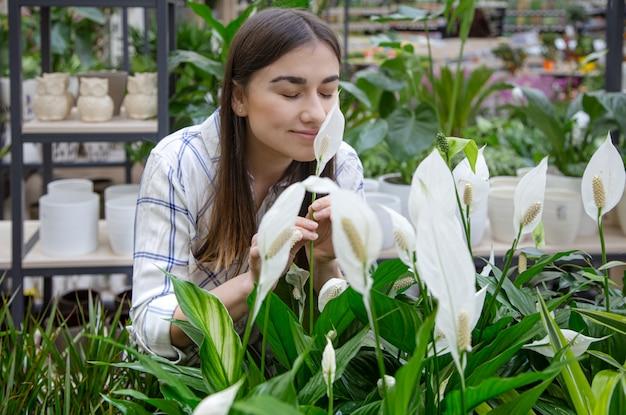 Mooie jonge vrouw in een bloemenwinkel en het kiezen van bloemen.