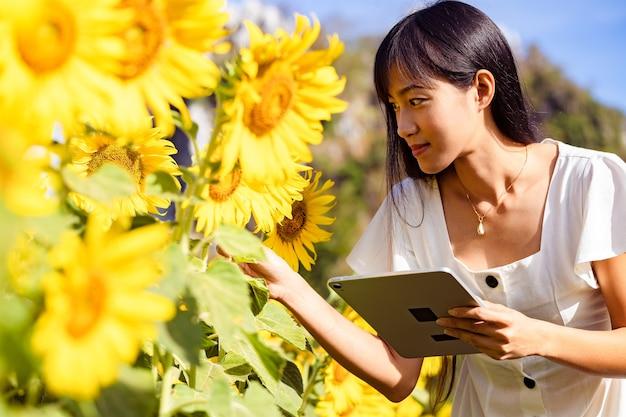 Mooie jonge vrouw met behulp van tablet voor het zoeken van informatie van bloemen in een veld met zonnebloemen in een witte jurk. ik