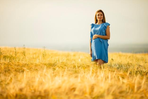 Mooie jonge zwangere vrouw in blauwe jurk buiten ontspannen in de natuur op zomerdag