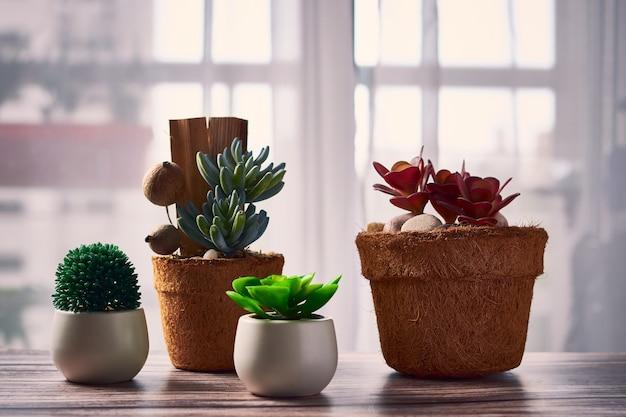 Mooie kamerplanten in bloempotten op tafel