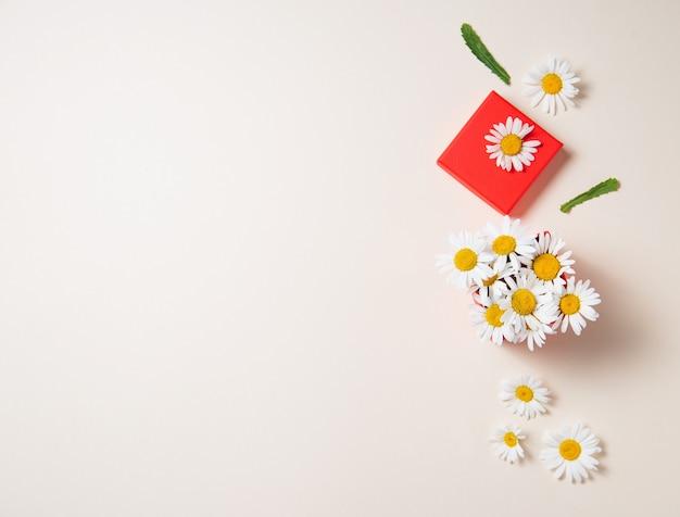 Mooie kamille bloemen in een rode geschenkdoos op een witte achtergrond. bovenaanzicht en ruimteafbeelding kopiëren