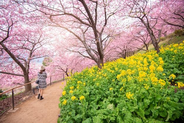 Mooie kersenbloesem in matsuda, japan